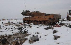 Леопард в Сирии